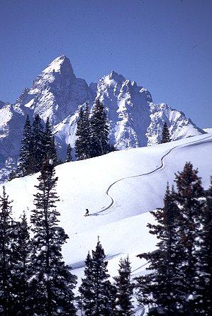 Jackson Hole Ski Area