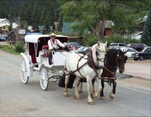 Enjoy a relaxing coachride through town