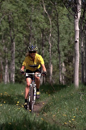 Biking in the Aspens ( click for trails )
