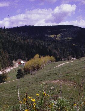Russia Canyon